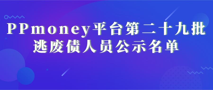 PPmoney平台第二十九批逃废债人员公示名单