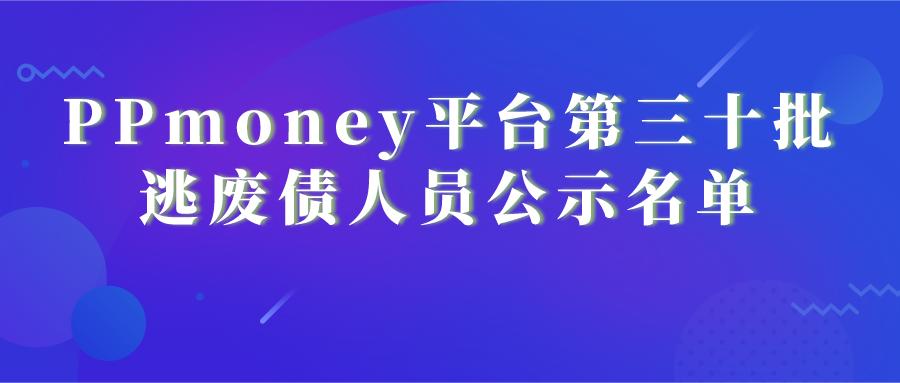 PPmoney平台第三十批逃废债人员公示名单